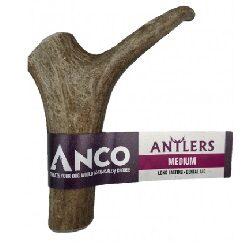 AC Antlers Medium
