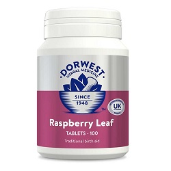DW Raspberry Leaf Tablets for Dogs & Cats – 100 Tablets