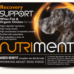 NM Recovery Support 500g